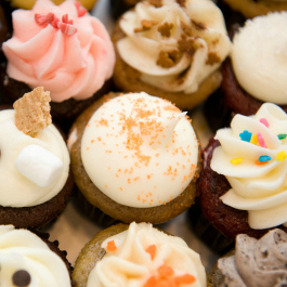 Misha's Cupcakes pembroke pines mommymafia.com