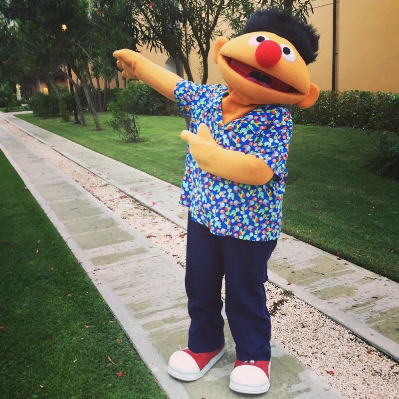 Ernie Sesame Street Memories