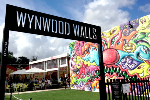 A Day Trip To The Miami Wynwood Walls | Miami Kids