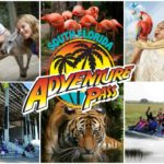 South Florida Adventure Pass – 7 Attractions For 1 Low Price