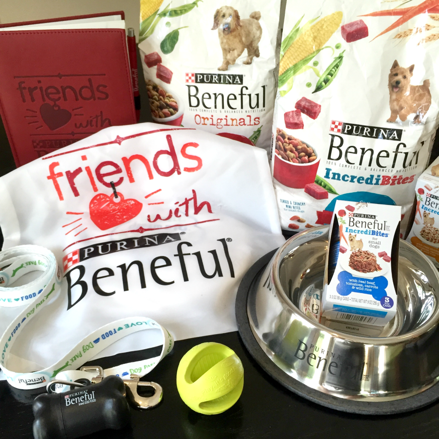 So exciting to be a part of the #FriendsWithBeneful Blogger Ambassador program!