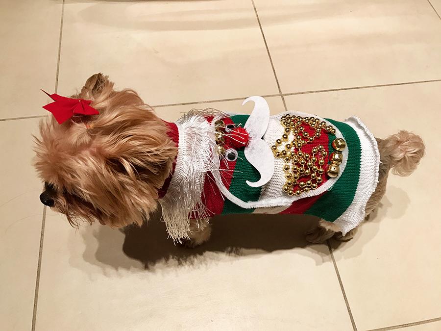 dog-ugly-christmas-sweater